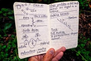 Notes de permaculture