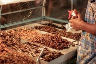 Buffet d'insectes en Thailande